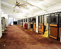SelectForce HDPE Horse Stables