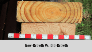 Old-Growth Wood Vs. New-Growth Wood - Chicago Tribune